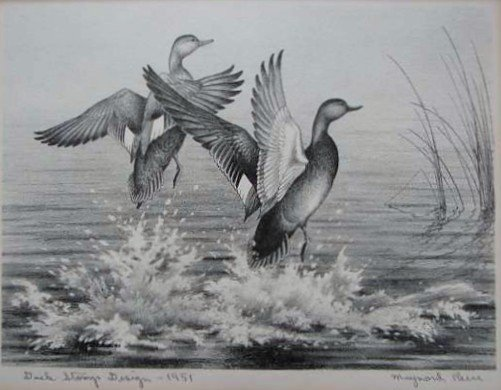 48: Nine (9) EARLY Migratory Federal Duck Stamp Prints - 9