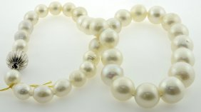 Pearl Necklace Appraised Value: $11,880
