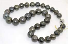 Tahitian South Sea Cultured Pearl Necklace AV 12383