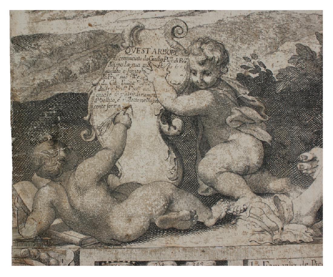Westerhout, Albero geneaologico Piccolomini - 16