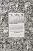 293 Plinius Secundus Gaius