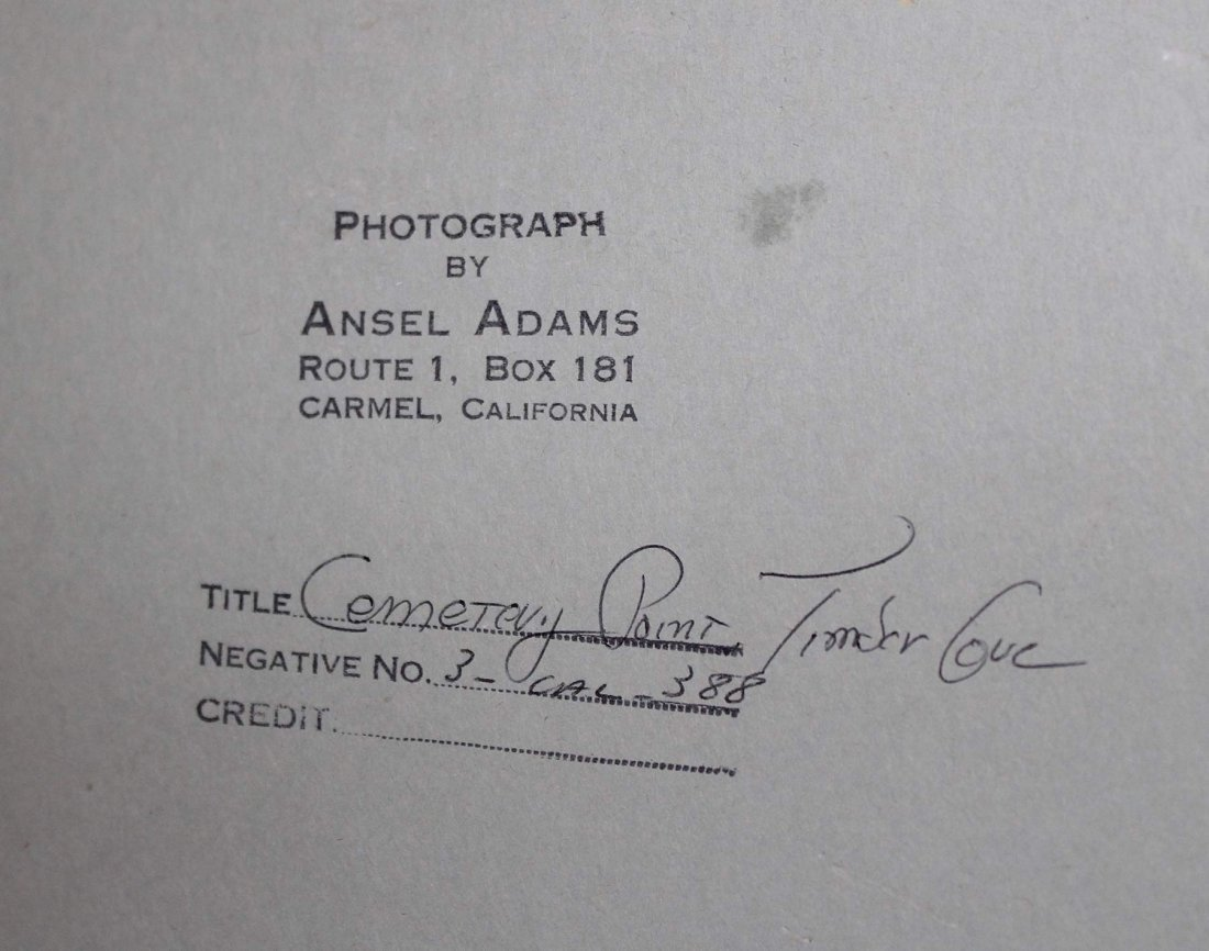 Ansel Adams, Cemetery Point, Timber Cove (3-CAL-388) - 3