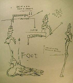 219: Jean Michel Basquiat Untitled