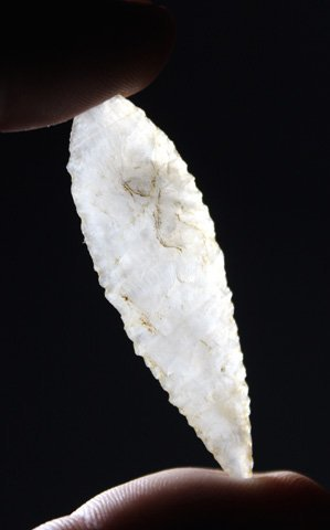Neolithic Bird Point - Saharan Africa