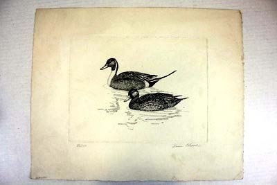 Two Ducks In A Pond, Signed And Numbered By Dave Chappl