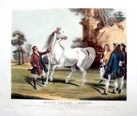 Darley Arabian Roxana England Hand Colored Engraving