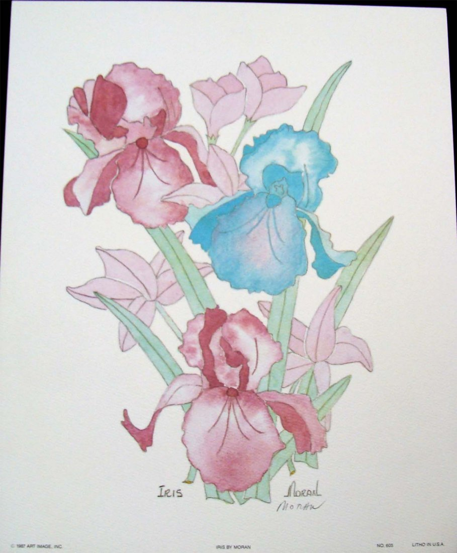 """""""Iris"""" by Moran Color lithograph 1987 Signed"""