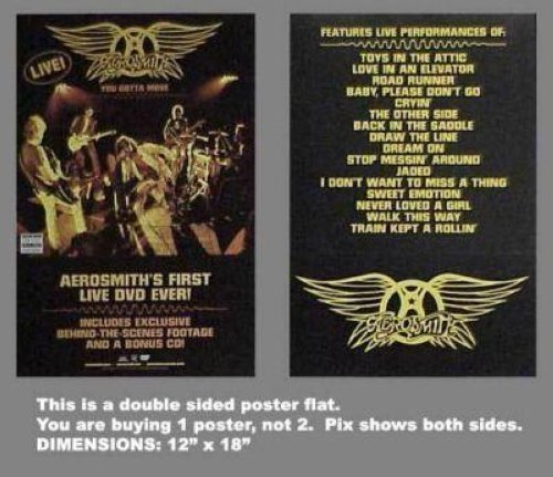 AEROSMITH FIRST LIVE DVD EVER 12X18 POSTER FLAT