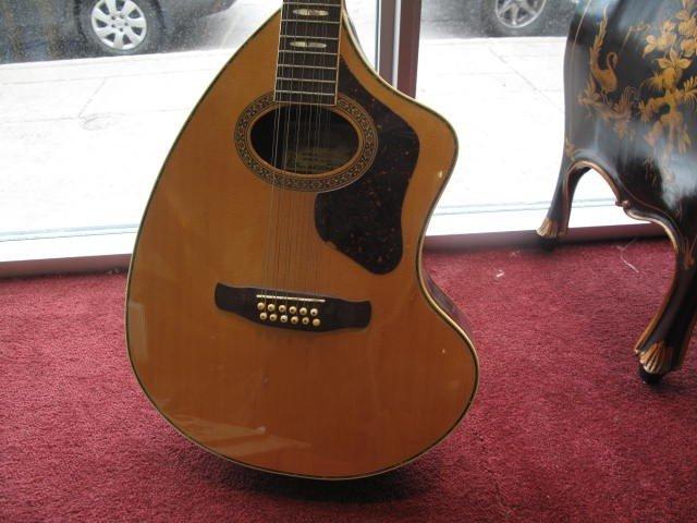 2: 12 strings Vintage guitar