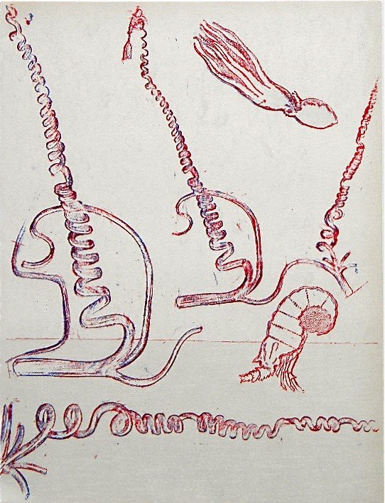 851: Max Ernst original lithograph, 1972