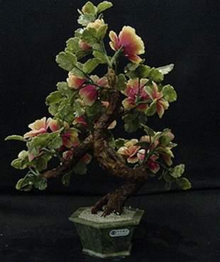 ORANGE JADE BONSAI FLOWER TREE