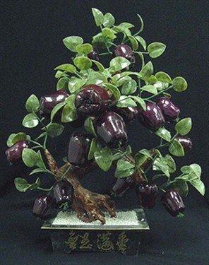 20: Real Jade Apples Tree