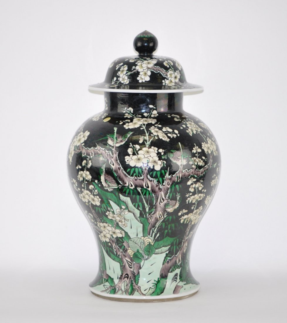 Chinese Famille Noire General Jar