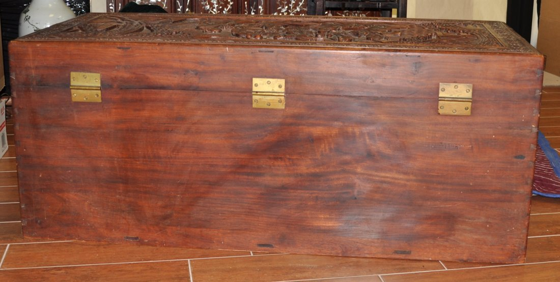 Chinese Extra Large Camphor Wood Trunk - 10