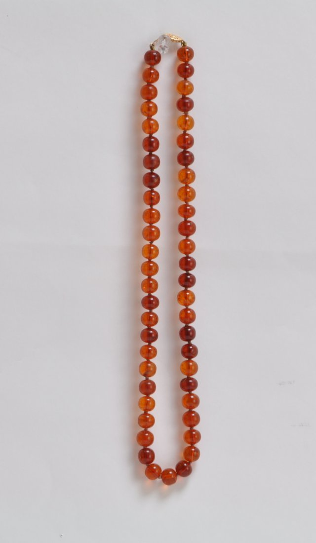 Large and Long Amber - 5