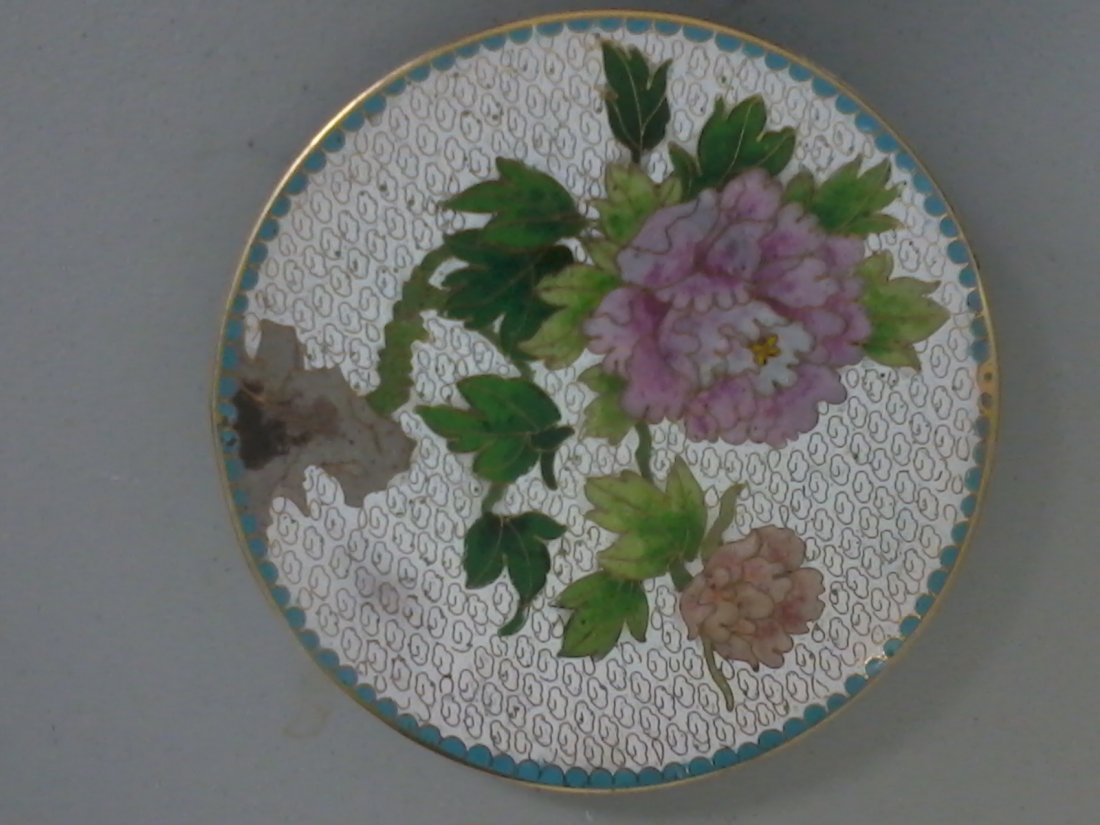 7025: A very fine Chinese cloisonne plate