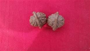 Mandarin walnut