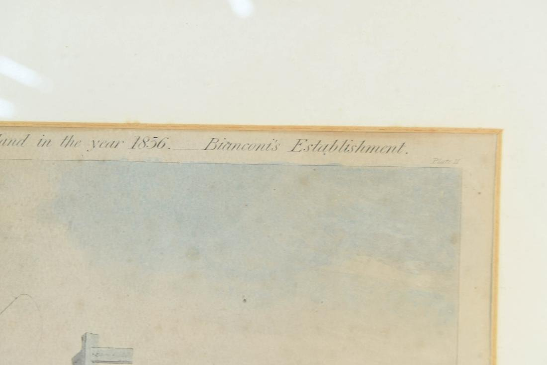 COLOR ENGRAVING PRINT 1856 - 4
