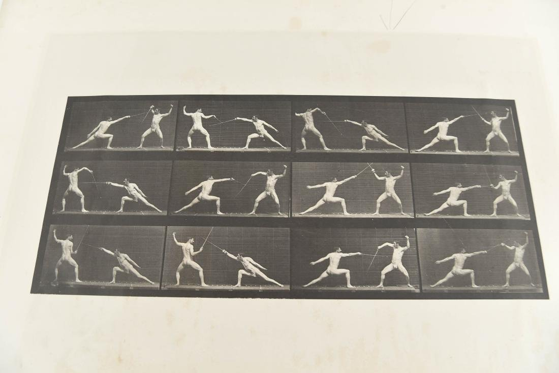 EADWEARD MUYBRIDGE, ANIMAL LOCOMOTION, PLATE 349 - 4