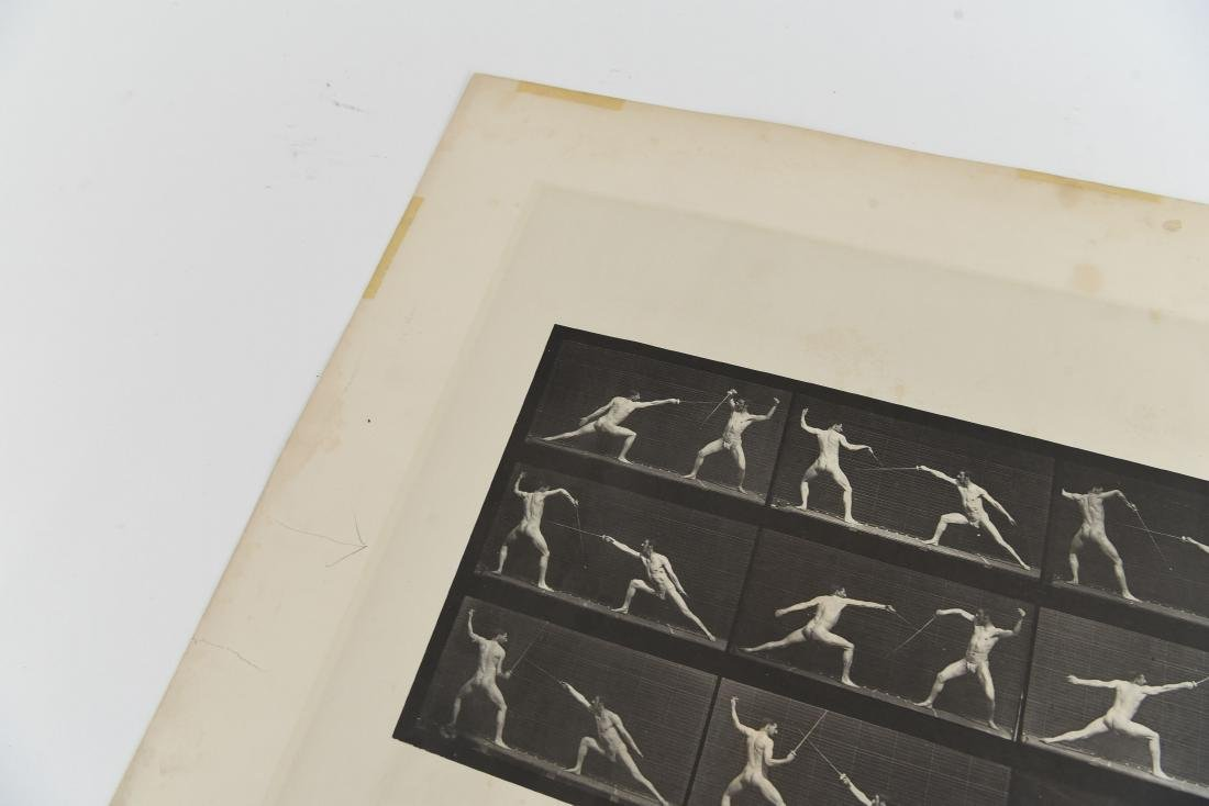 EADWEARD MUYBRIDGE, ANIMAL LOCOMOTION, PLATE 349 - 5