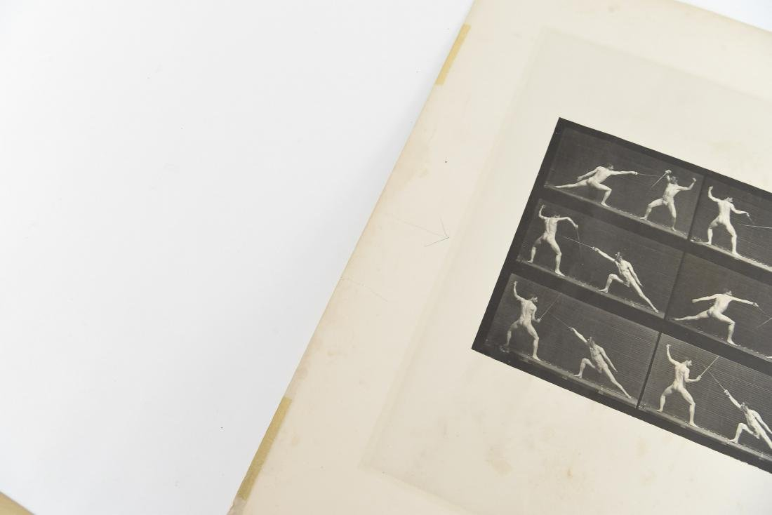 EADWEARD MUYBRIDGE, ANIMAL LOCOMOTION, PLATE 349 - 6