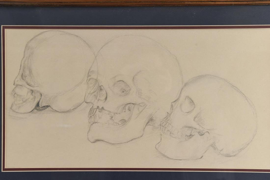 20TH CENTURY SKULL STUDY PENCIL DRAWING - 2
