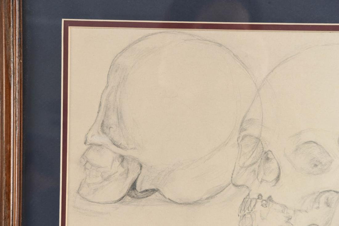 20TH CENTURY SKULL STUDY PENCIL DRAWING - 3