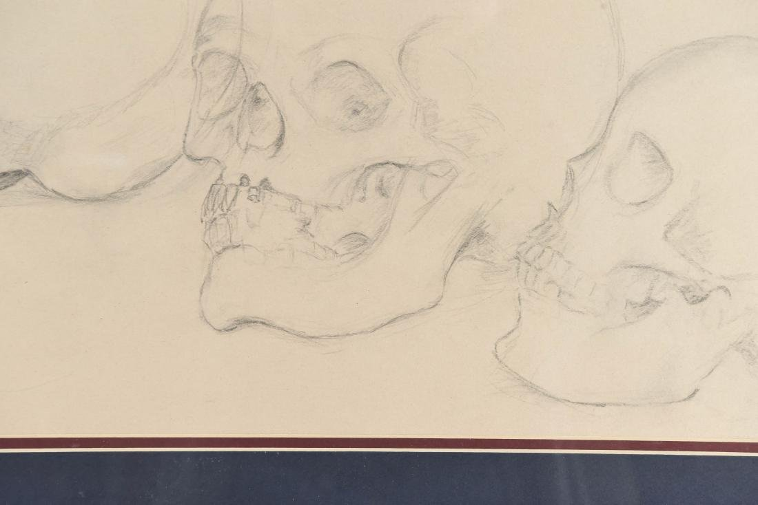 20TH CENTURY SKULL STUDY PENCIL DRAWING - 5