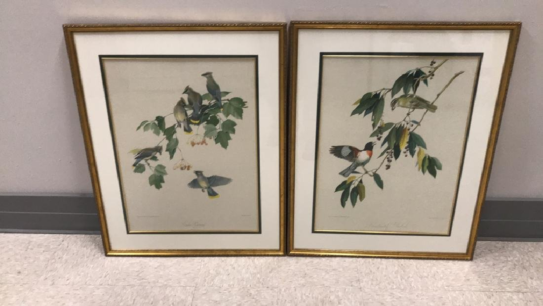 (2) ROGER T. PETERSON LITHOGRAPHS