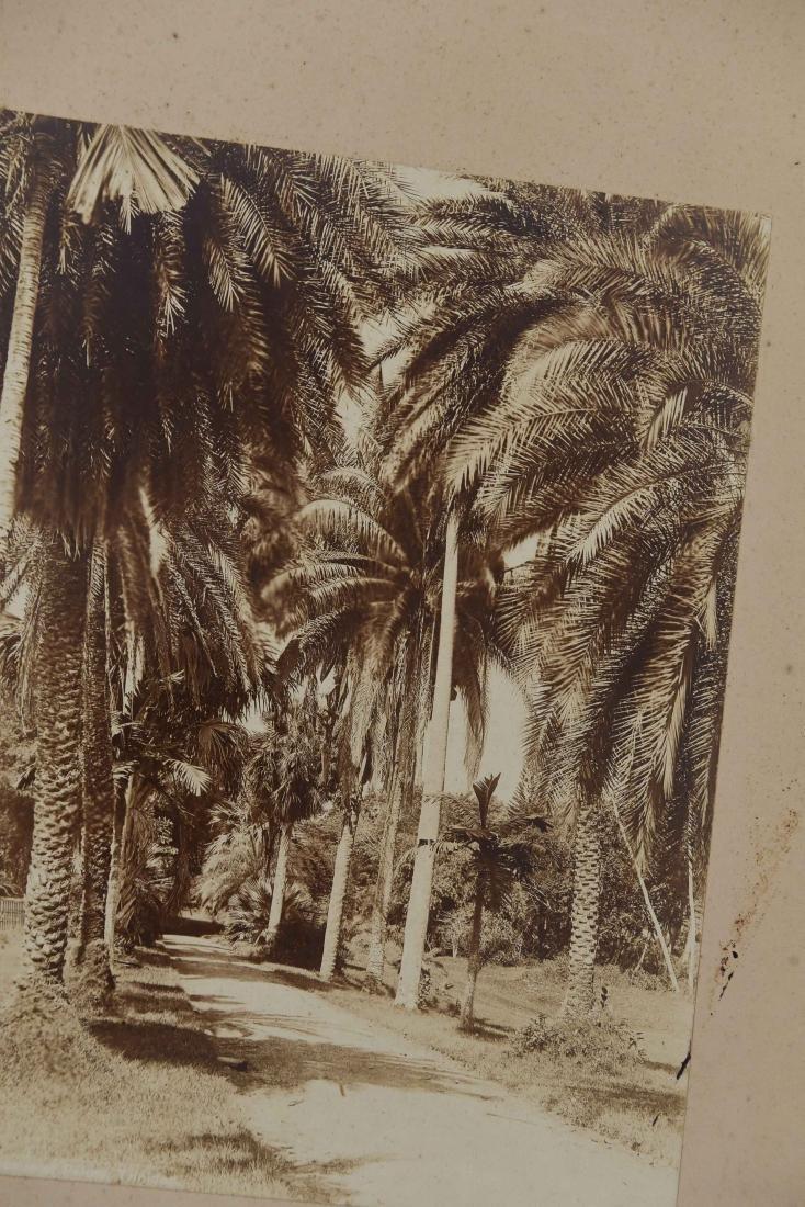 GROUPING OF JAMAICA & BAHAMAS ETC. PHOTOS - 6