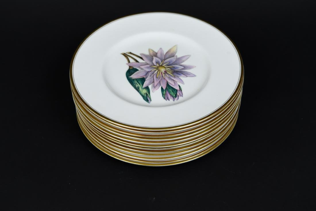 SET OF 12 ROYAL WORCESTER FLORAL PLATES - 2