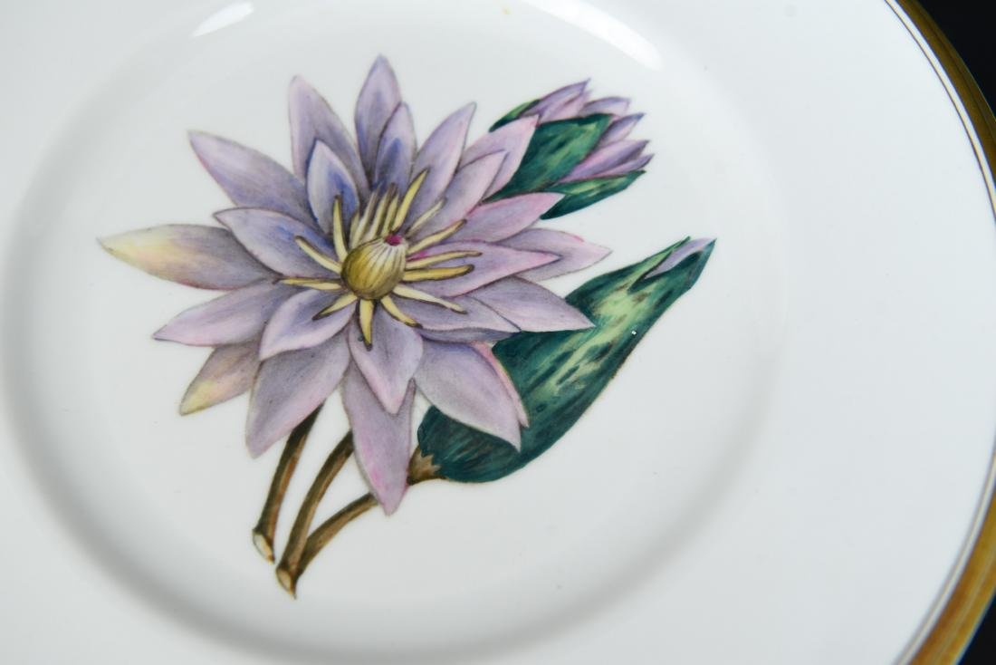 SET OF 12 ROYAL WORCESTER FLORAL PLATES - 3