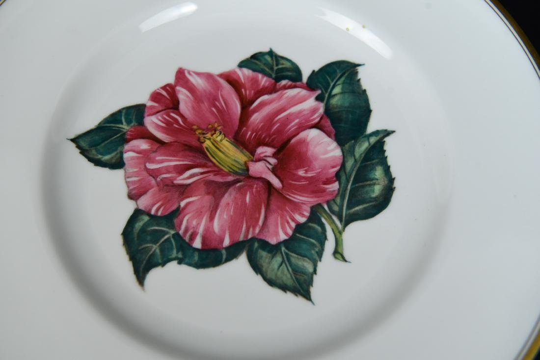 SET OF 12 ROYAL WORCESTER FLORAL PLATES - 4