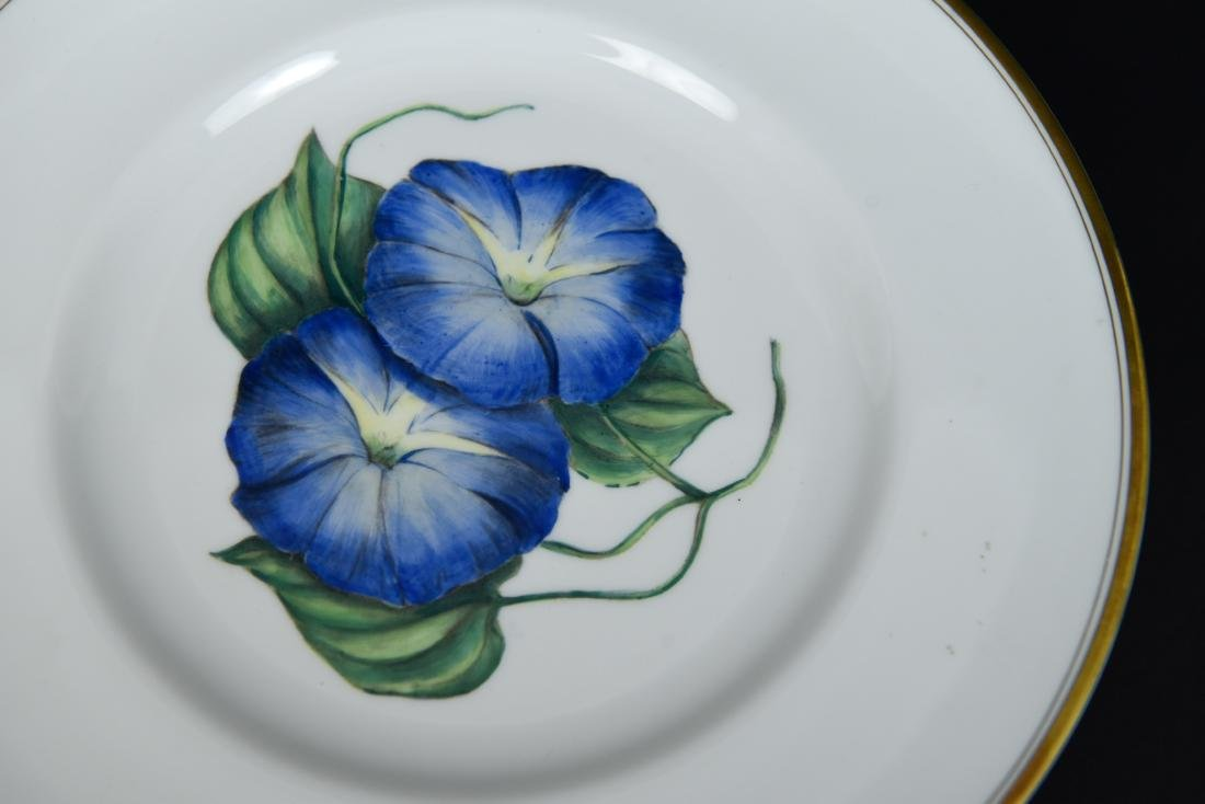 SET OF 12 ROYAL WORCESTER FLORAL PLATES - 8
