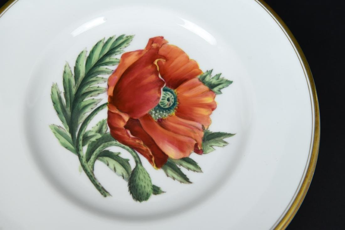 SET OF 12 ROYAL WORCESTER FLORAL PLATES - 9
