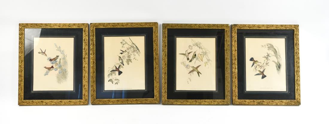 (4) BIRD PRINTS IN ORNATE FRAMES