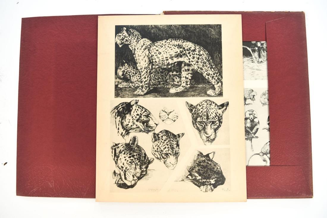 FRENCH PORTFOLIO OF ANIMAL STUDIES BY MEHEUT
