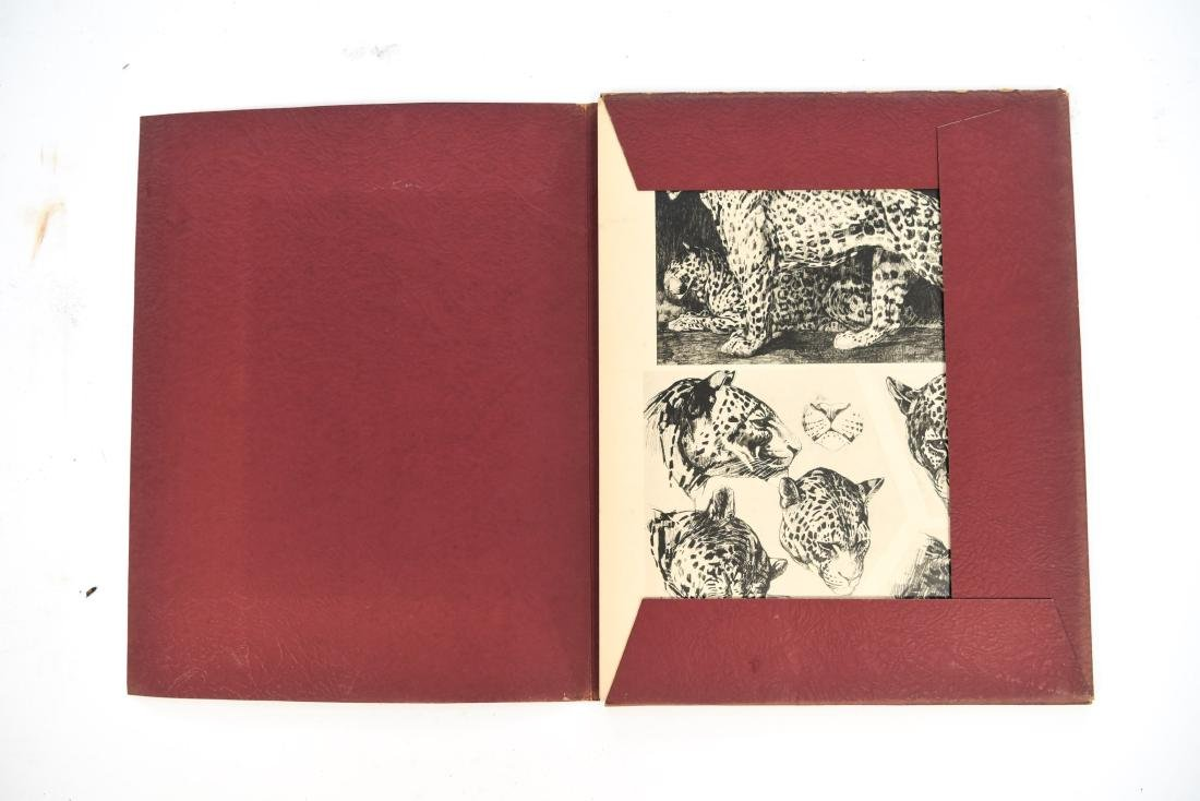 FRENCH PORTFOLIO OF ANIMAL STUDIES BY MEHEUT - 3