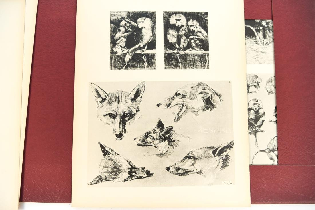 FRENCH PORTFOLIO OF ANIMAL STUDIES BY MEHEUT - 7