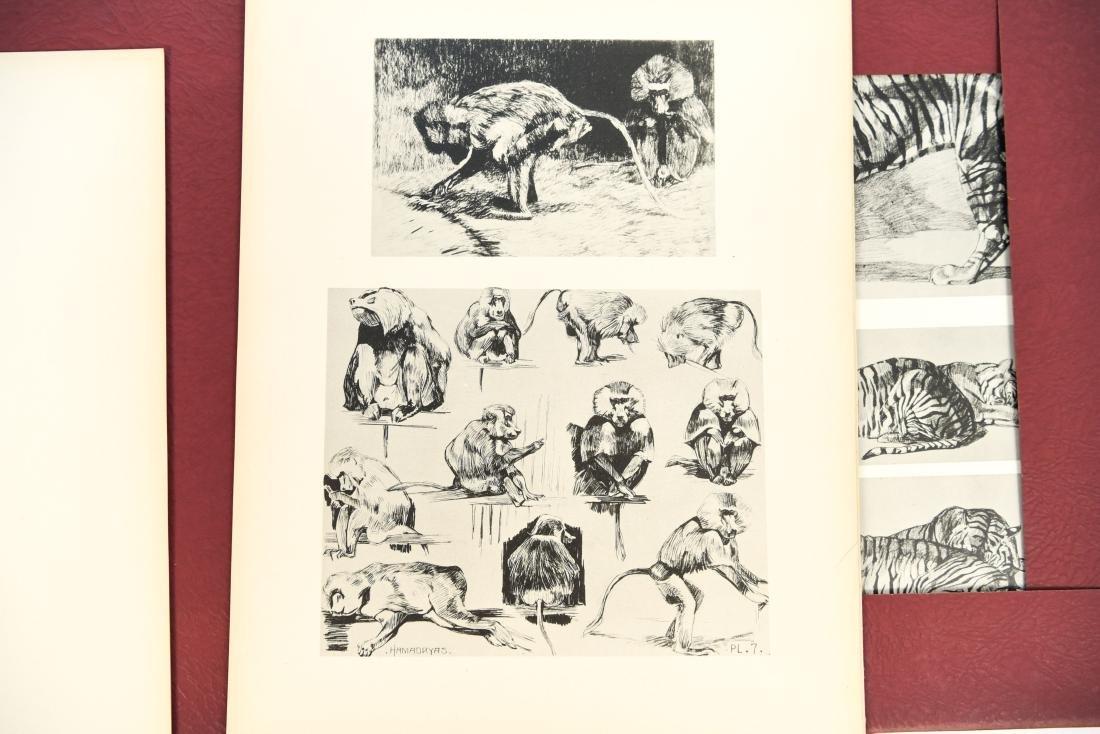FRENCH PORTFOLIO OF ANIMAL STUDIES BY MEHEUT - 8