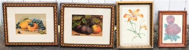 GROUPING OF 4 FLOWER  FRUIT PRINTS