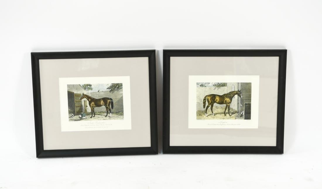 (2) ENGLISH HORSE PRINTS