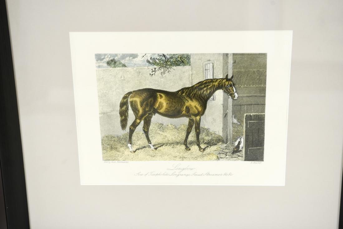(2) ENGLISH HORSE PRINTS - 3