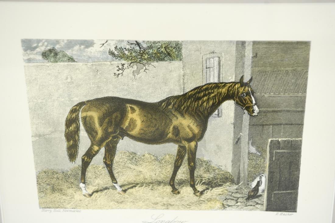 (2) ENGLISH HORSE PRINTS - 6