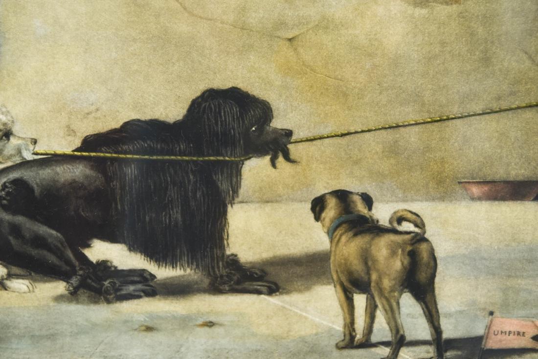 """1899 """"THE TUG OF WAR"""" DOG PRINT - 3"""