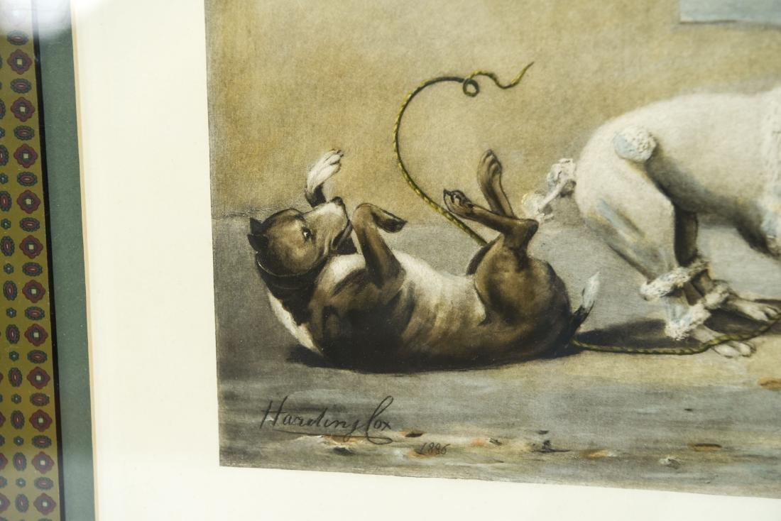 """1899 """"THE TUG OF WAR"""" DOG PRINT - 6"""