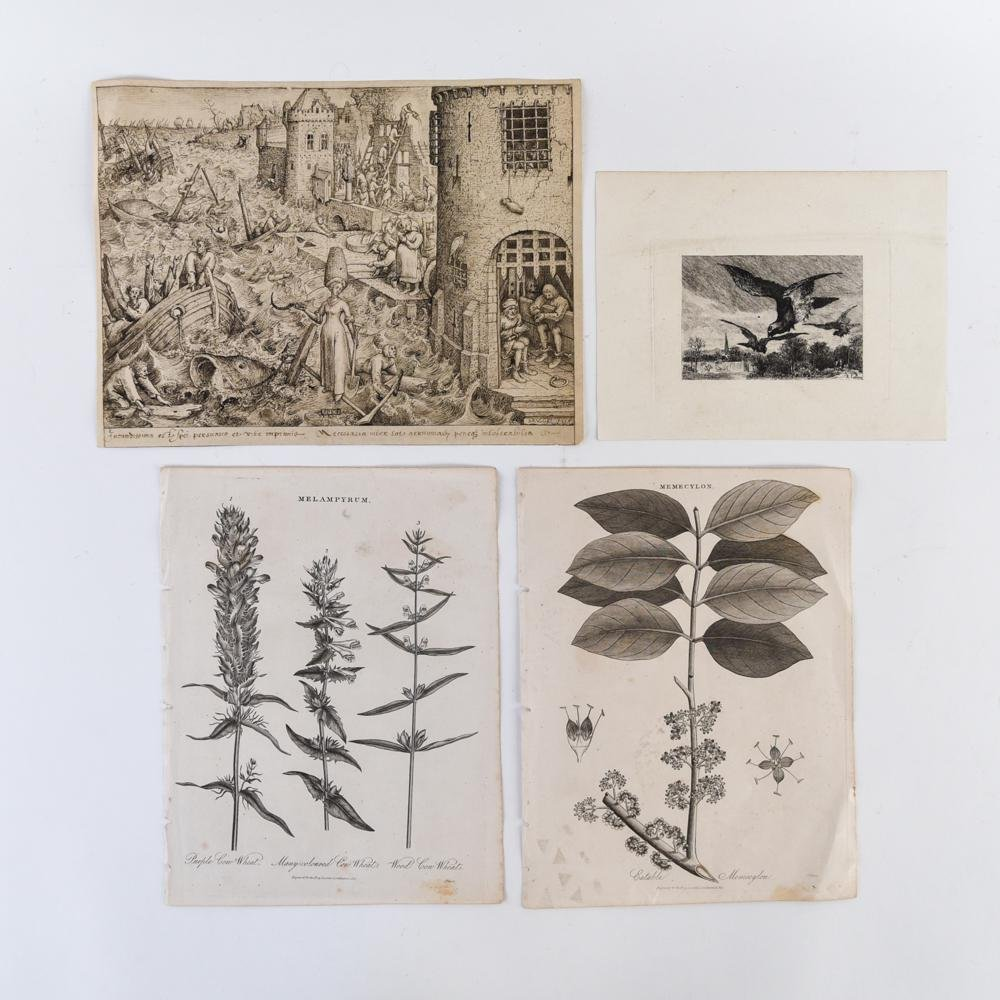 (4) GROUING OF ETCHINGS AND ENGRAVINGS
