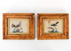 PAIR OF 19TH C. FEATHER BIRD PICTURES
