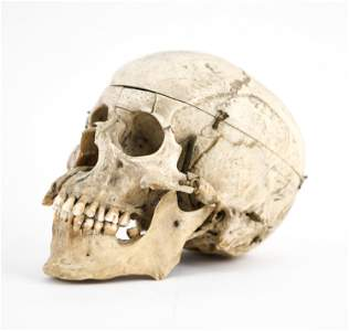ANTIQUE DISSECTED HUMAN SKULL