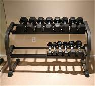 SET OF CAP DUMBELL WEIGHTS & PARABODY WEIGHT STAND
